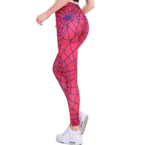 Spider Webs 3
