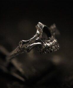 Human Jaw 2