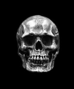 Human Skull 2